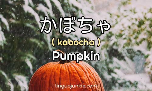 かぼちゃ Kabocha Pumpkin