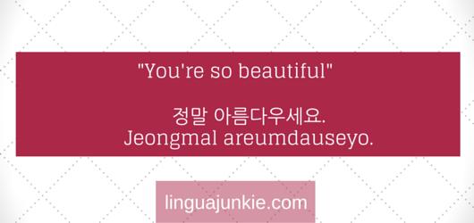 linguajunkie.com (2)