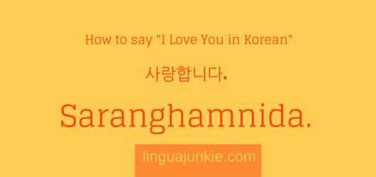 how to write i love you in korea