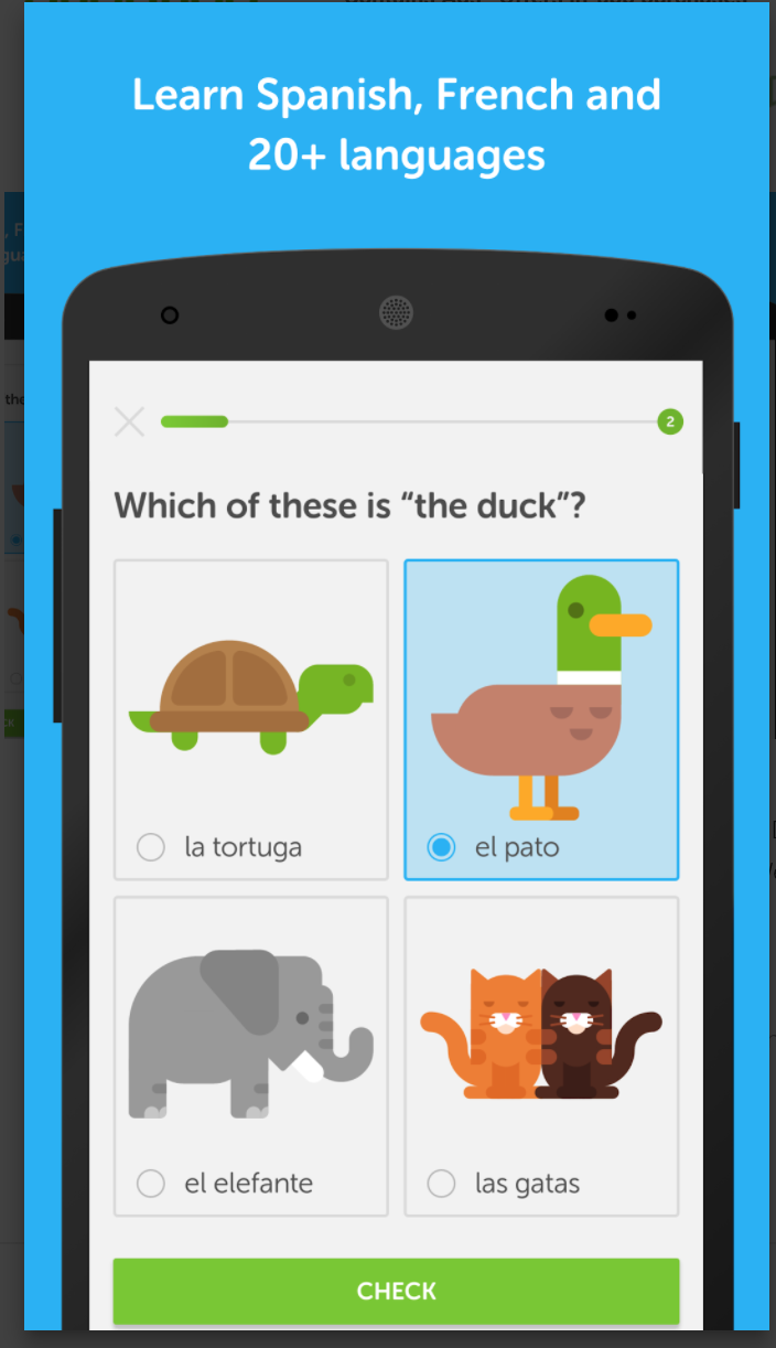 learn german in 5 minutes