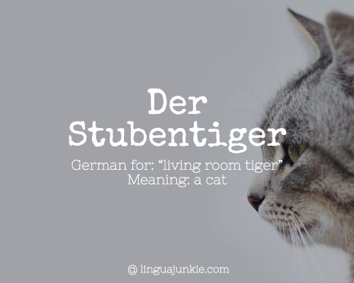 Der Stubentiger beautiful german words