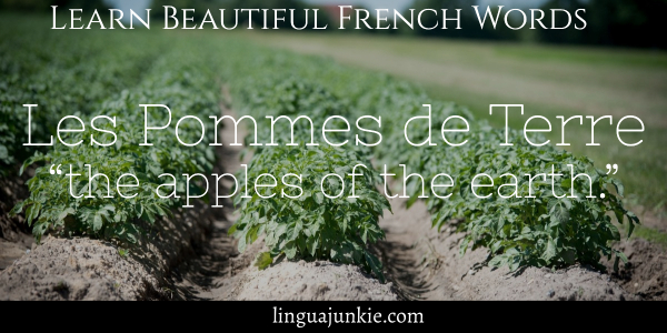 beautiful french words