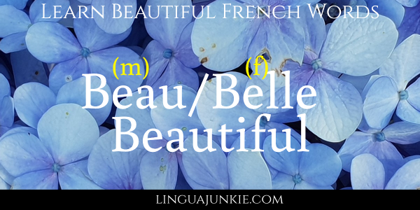 beautiful in french