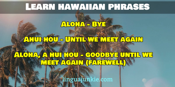 bye in hawaiian