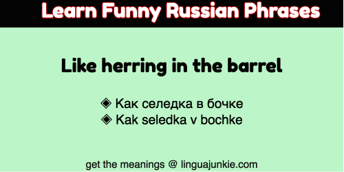funny russian phrases