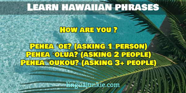 how are you in hawaiian