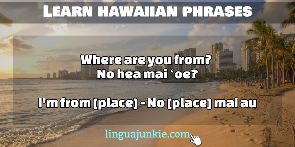 Top 28 Basic Hawaiian Phrases for Beginners