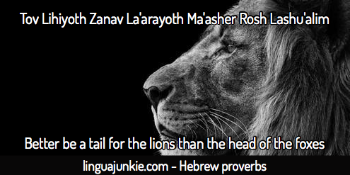 Learn Hebrew: Top 10 Hebrew Proverbs & Sayings