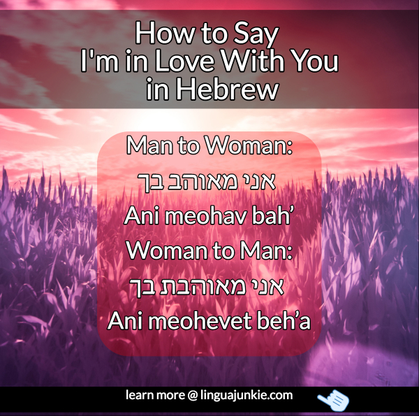 6 Ways to say I Love You in Hebrew (Lesson & Audio)