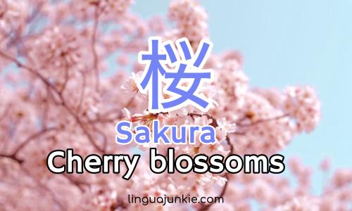 japan spring words