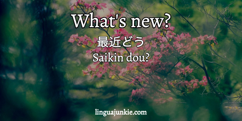 say hello in japanese