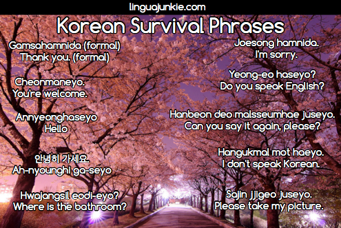 Korean survival phrases 15 phrases for real life part 7 korean survival phrases by linguajunkie m4hsunfo