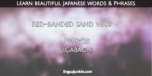 Dating in japanese phrases in english