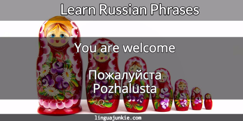 you're welcome in russian